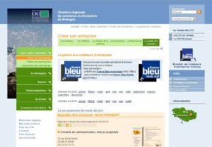 Une entreprise bretonne à l'honneur : Elyazalée, l'éco-citoyenne.