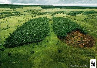 WWF affiche déforestation