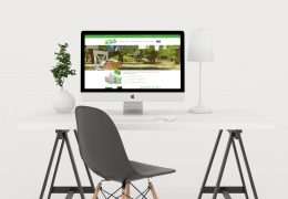 Création du site web de Breizh Wash