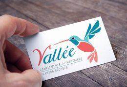 Création du logo de l'entreprise Vallée